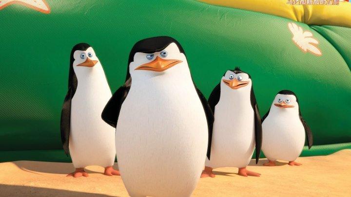 """Классный мультфильм """"Пингвины Мадагаскара"""""""