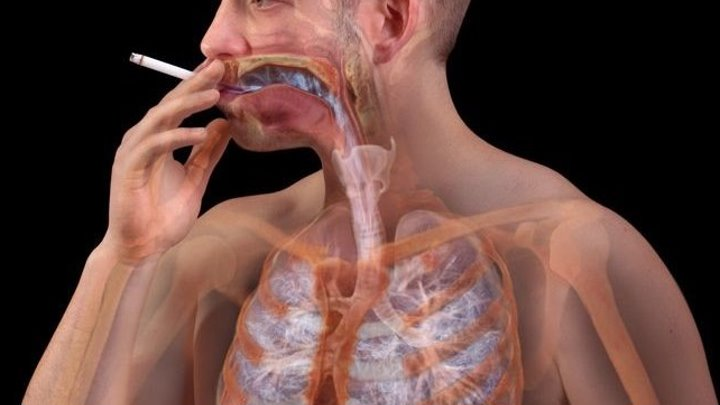 Смотреть тем, кто курит