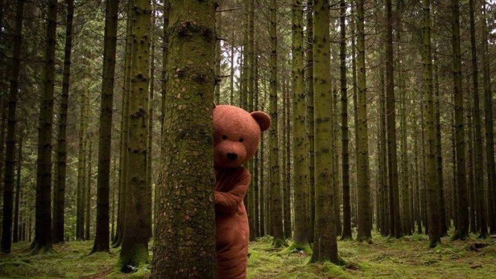 Черный медведь - Короткометражка, Ужасы, Комедия, Трэш (2015) HD 18+