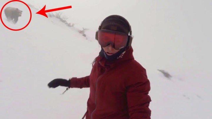 Сноубордистка не заметила медведя, который хотел её съесть