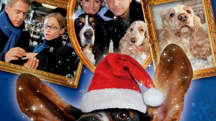 новогодняя мелодрама _ Две рождественских собаки (2005) Zwei Weihnachtshunde