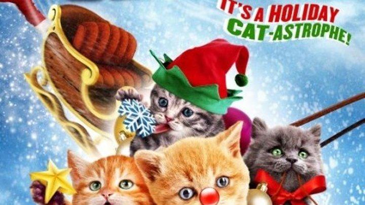 """семейный новогодний фильм _Санта Мяус (2014) Santa Claws WEB-DL.720p Жанр: Семейный, Фэнтези.""""?"""
