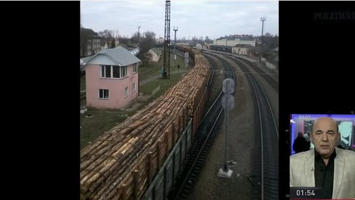 Мнение по поводу леса кругляка Татьяны Монтян, Геннадия Балашова, Вадима Рабиновича и Евгения Мураева