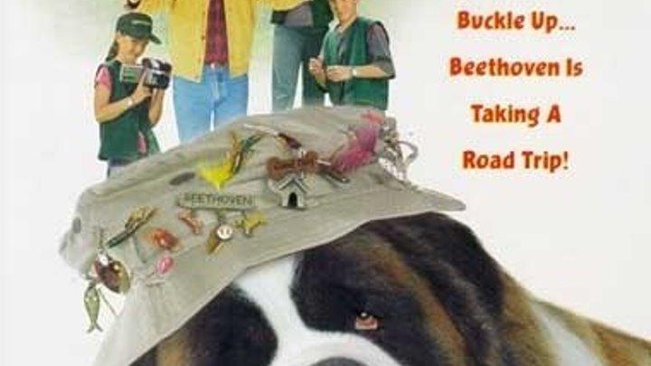 """супер семейная комедия _ Бетховен 3 (2000)Жанр: Семейный, Комедия. Слоган: """"Самый обаятельный пёс в мире собирается в своё самое большое путушествие!""""."""