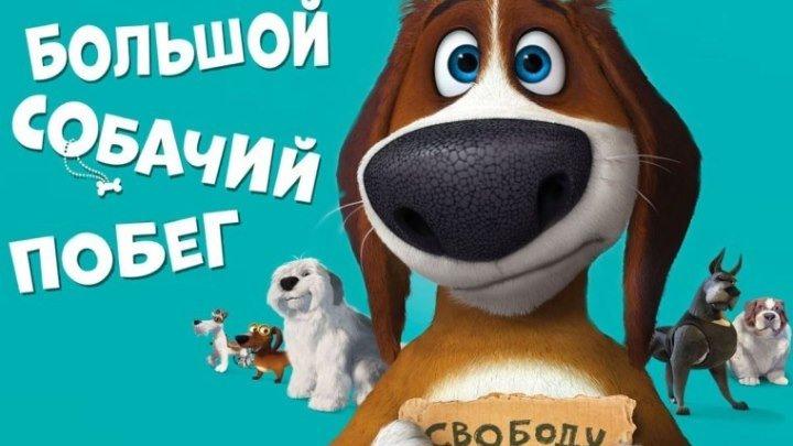 Мультфильм Большой собачий побег (2016)