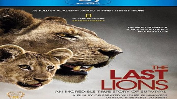 последние львы (док)