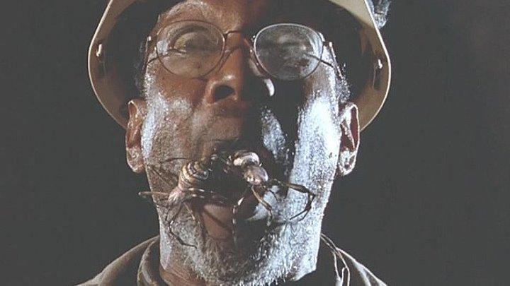 """""""Атака пауков"""" смотреть фильм ужасы, фантастика."""
