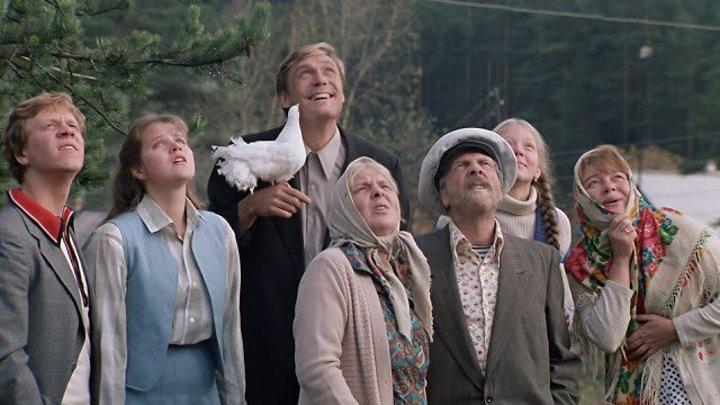 Любовь и голуби (1984) - Комедия, мелодрама.