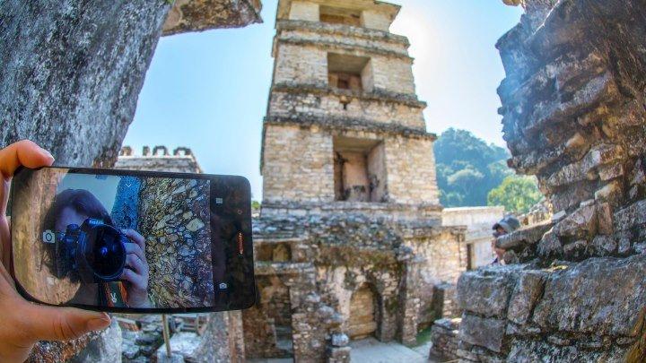 Куда исчезли индейцы майя? Двое и алоэ