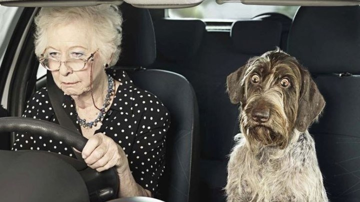 Бабуля припарковалась
