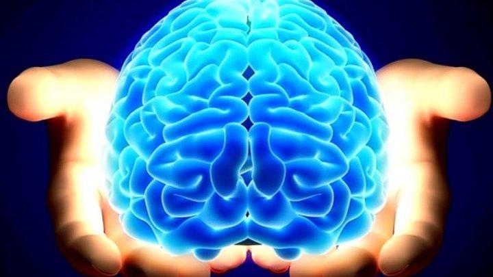 Смерть - иллюзия мозга! Сенсационный вывод - Кто управляет человеческим разумом
