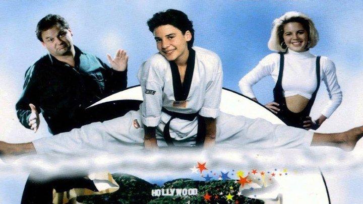 Молодой Ниндзя / Чудо-парень / Ниндзя-драконы (США 1993 HD) Комедия, Боевик