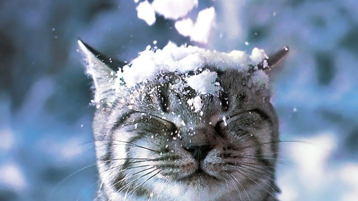 Пламя - Снег кружится летает,летает - классный клип!
