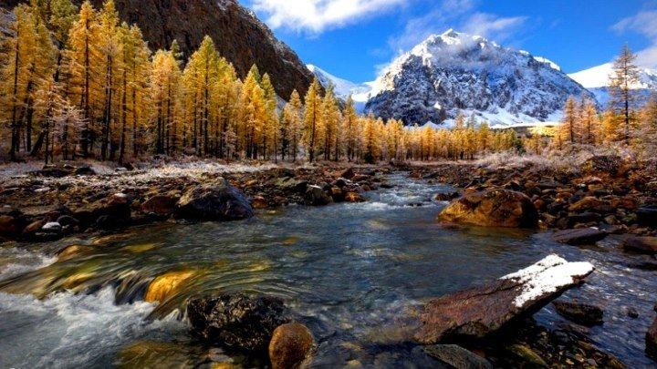 Дикая природа России. Сибирь (National Geographic)