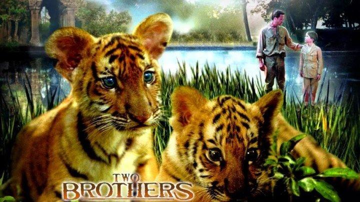 Два брата (2004)
