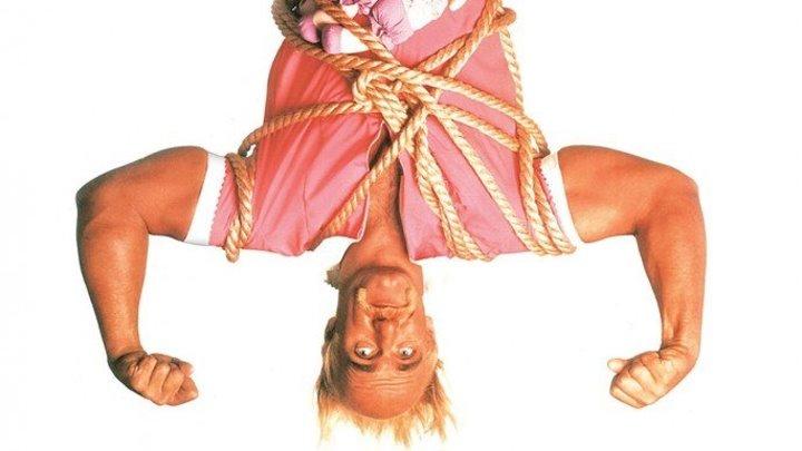 Мистер Нянь (комедийный боевик с 12-кратным чемпионом мира в тяжелом весе Терри Халк Хоганом) | США, 1993