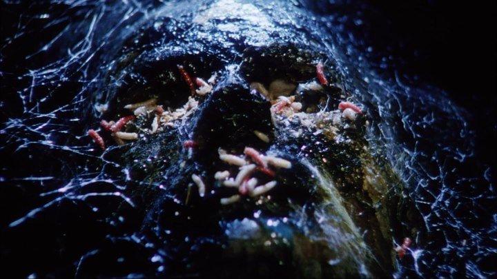 Голоса извне (1991, Ужасы, детекти) перевод Сергей Визгунов