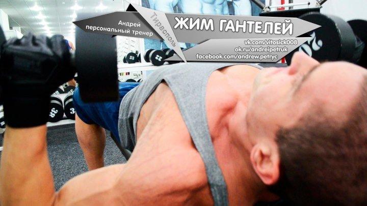 Жим гантелей 04.11.16 (тирасполь, фитнес, приднестровье, пмр, спорт, клуб, здоровый образ жизни, персональный тренер, пресс, бодибилдинг, мышцы, рельеф, упражнение, супер, счастье, мотивация, тренировка, грудные мышцы, грудь)
