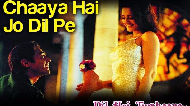 Chaaya Hai Jo Dil Pe - Dil Hai Tumhaara ¦ Preity Zinta & Arjun Rampal ¦ Kavita Krishnamurthy & Shaan
