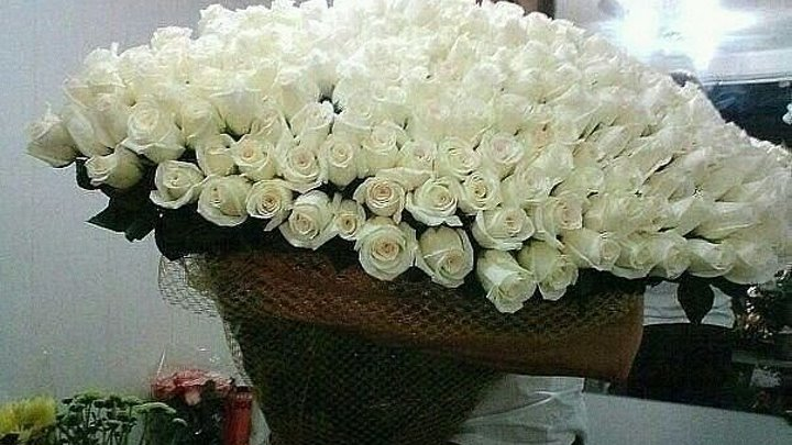 Я дарил тебе розы белые