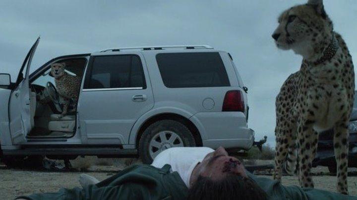 СОВЕТНИК (США, Великобритания 2013 HD) 16+ Криминал, Драма, Триллер