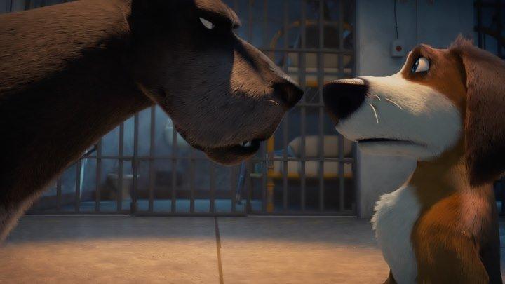 Большой собачий побег. Комедия мультфильмы приключения