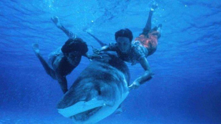 Ловец акул с острова Бора-Бора / Beyond the Reef (США 1981 HD) Драма, Приключения