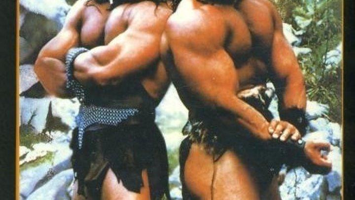 Братья варвары (1987) Фантастика, Фэнтези В ролях: Питер Пол, Дэвид Пол, Ричард Линч