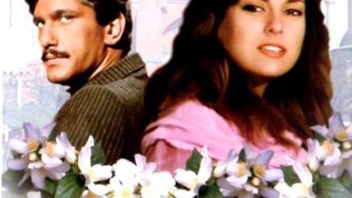 турецкая мелодрама _ Королек птичка певчая.1986 все серии