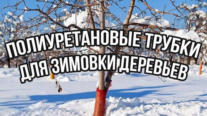 Полиуретановые трубки для зимовки деревьев