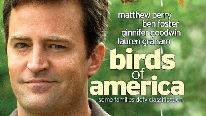 Птицы Америки (2008) драма, комедия HDRip от Scarabey P Мэттью Перри, Бен Фостер, Джиннифер Гудвин, Лорен Грэм