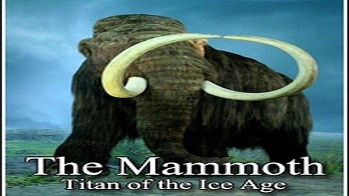 Мамонты - титаны ледникового периода. 1 серия