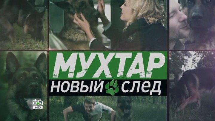Мухтар. Новый след / сезон 1 / серия 66 из 96 / 2016