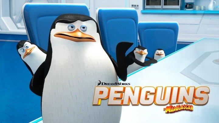 Пингвины Мадагаскара - (Комедия,Семейный) 2014 г СЩА