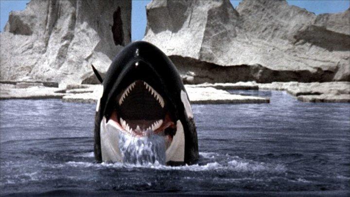 Смерть среди айсбергов Орка - кит убийца (1977)