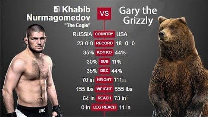 ТОП 5 РЕКОРДОВ ПО ПЕРЕВОДАМ В ПАРТЕР ЗА 1 БОЙ В UFC!
