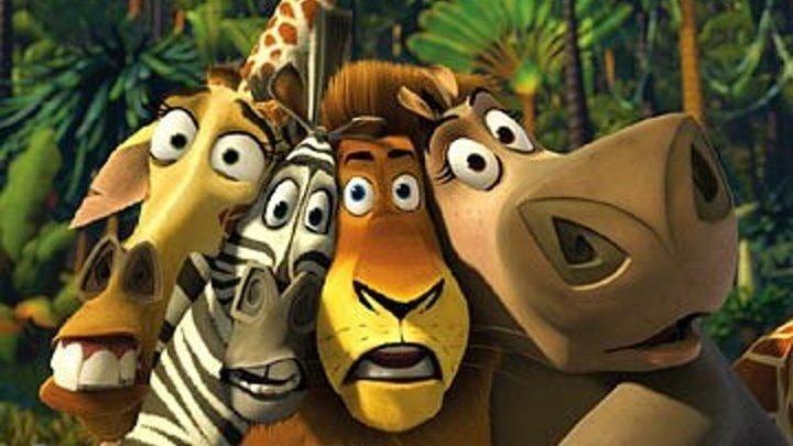 Мадагаскар HD(комедия, приключения)2005
