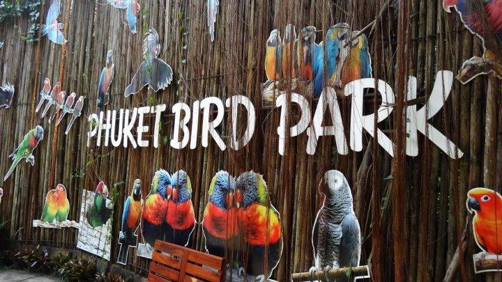 Пхукет Парк птиц