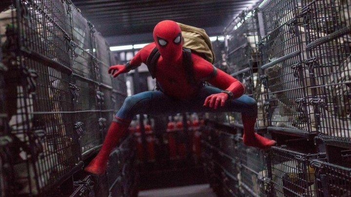 Человек-Паук: Возвращение домой / Spider-Man: Homecoming 2017 США