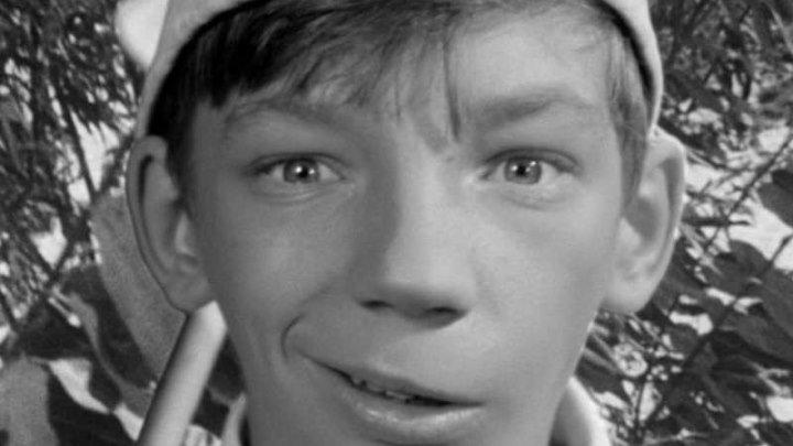 Добро пожаловать, или Посторонним вход воспрещен HD(комедия, семейный)1964