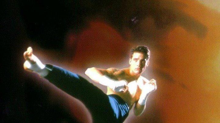 Кикбоксер 4: Агрессор (США, 1994 г.)