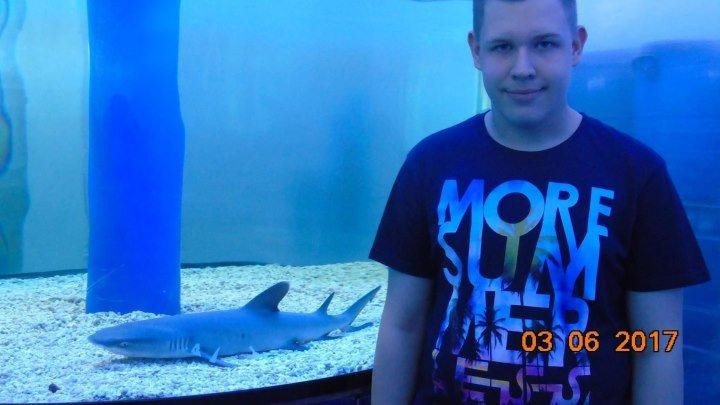 Здесь был Максим 3 сезон 13 выпуск на выставке Подводный мир!