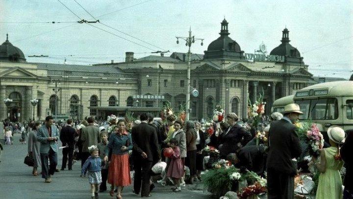 Цвет жизни. Начало. Москва 40-е-50-е • 2010