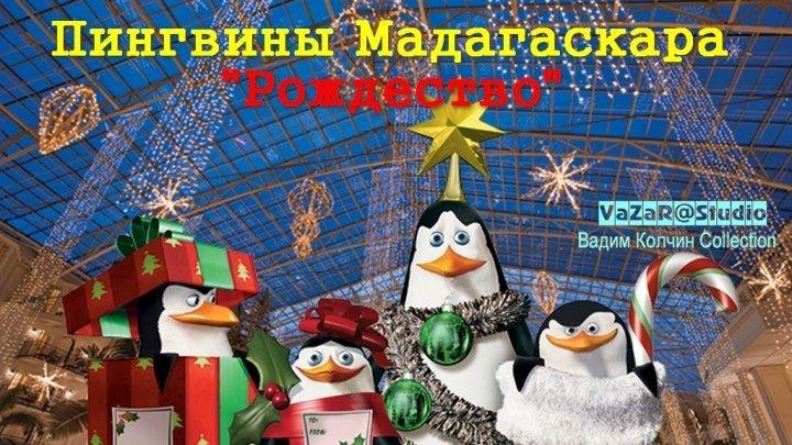 Пингвины Мадагаскара Рождественские Приключения [VaZaR@S†udio]
