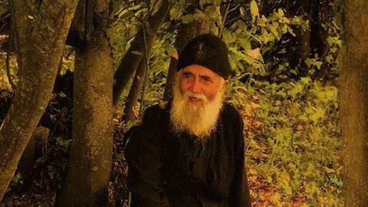 Паисий Святогорец / Жизнь и духовные наставления