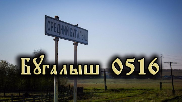 трейлер Бугалыш 0516