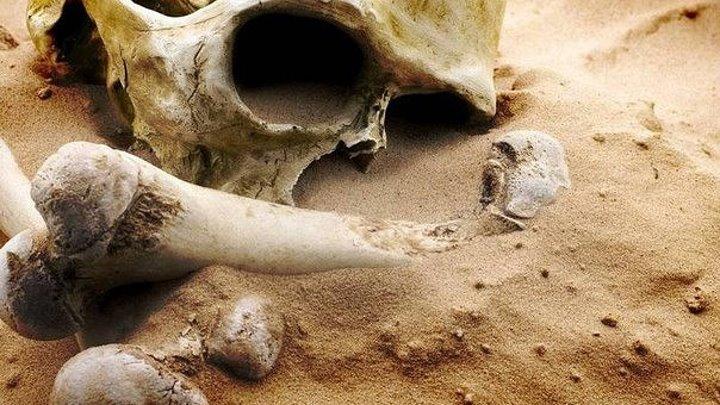 10 находок, доказывающих существование в прошлом людей великанов