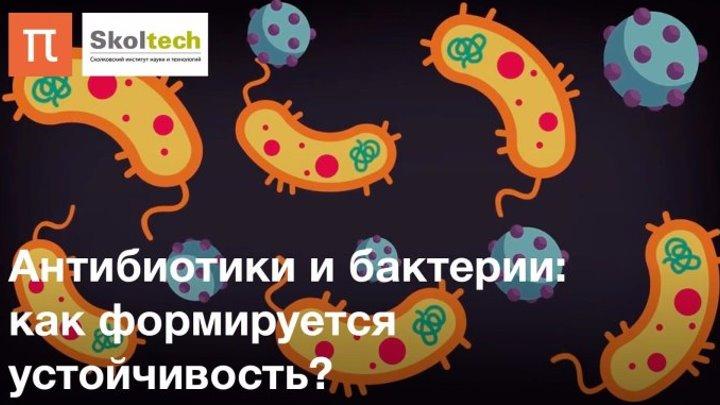 Антибиотики и бактерии׃ как формируется устойчивость