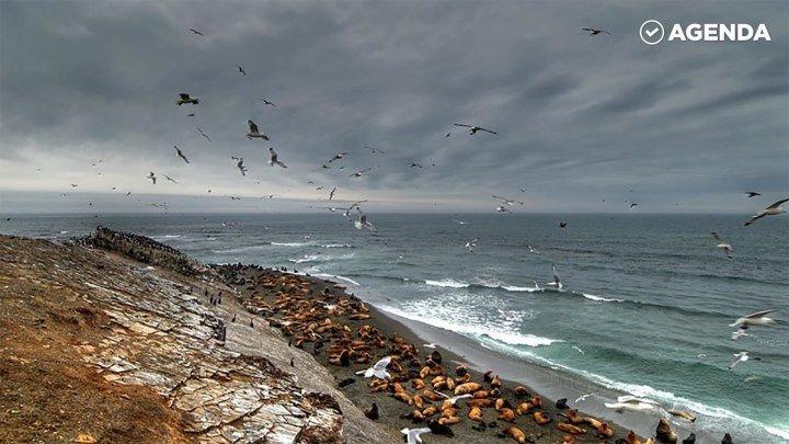 Остров Сахалин. Самые красивые места России
