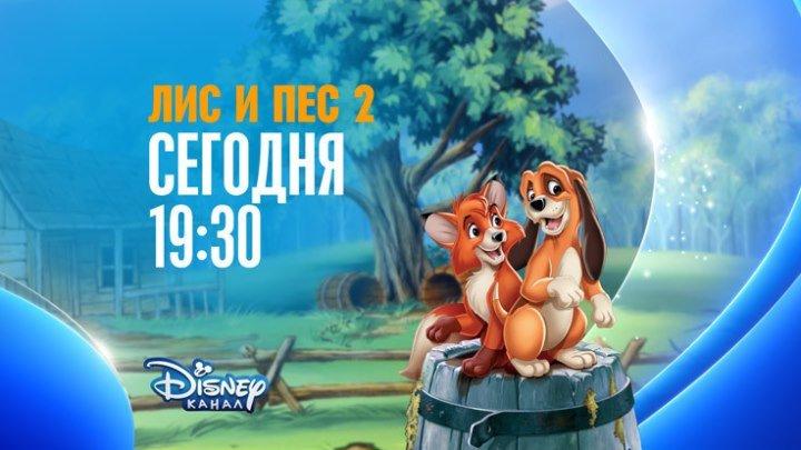 """""""Лис и пёс-2"""" на Канале Disney!"""
